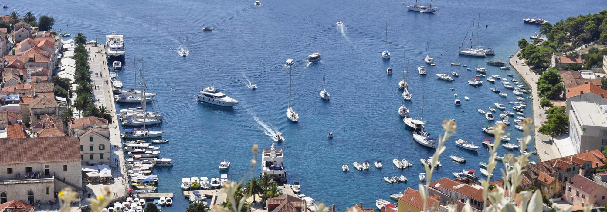 Hvar – The sunniest island in Croatia